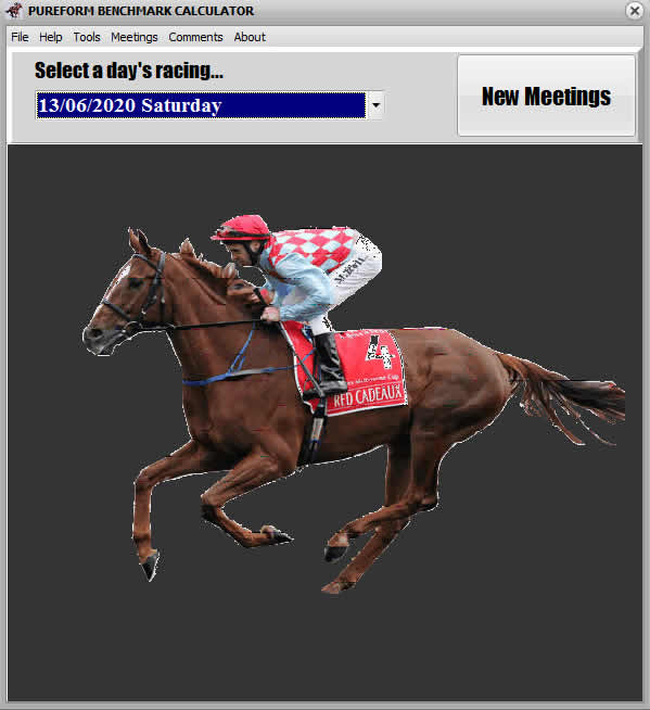 Horse Racing Handicapping | Pureform